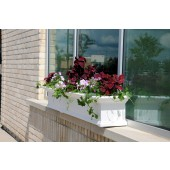 "96""W x 12""D x 10""H Yorkshire Window Box 8FT White"
